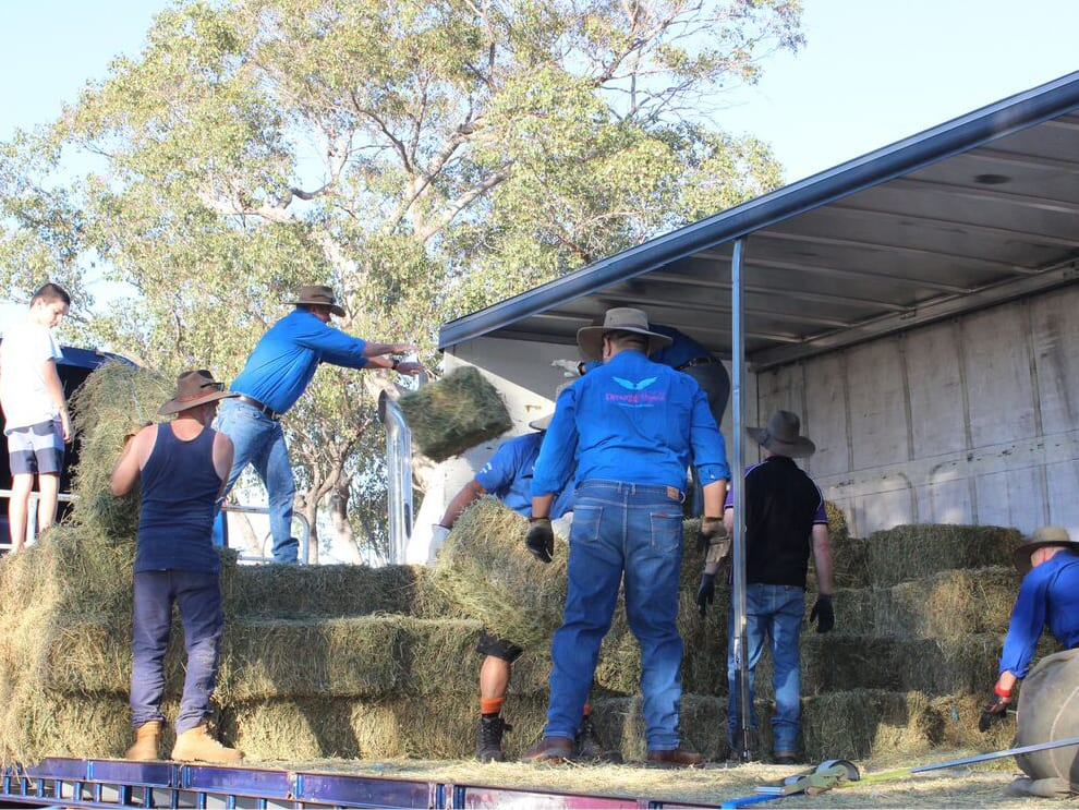 DROUGHT ANGELS - Delivering Hay