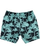 Youth Boys Print Volley Boardshort