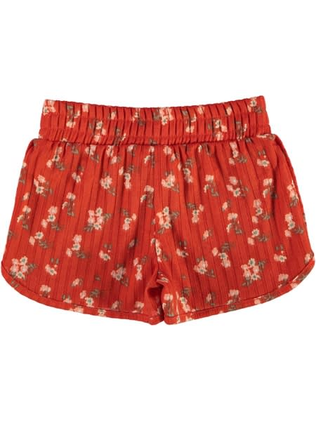 Toddler Girls Printed Rib Shorts