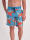 Mens Long Leg Board Short