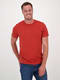 Mens Short Sleeve Organic Cotton T Shirt
