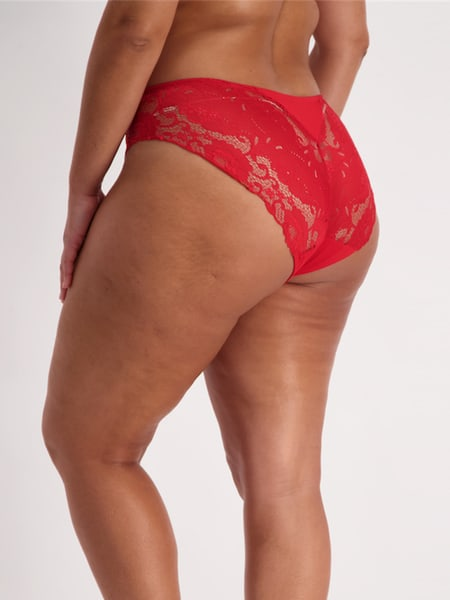 Rose Lace Full Briefs